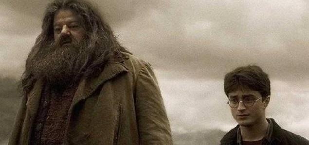 Daniel Radcliffe reveló con que personaje de Harry Potter quisiera pasar la cuarentena