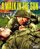 Un paseo bajo el sol
