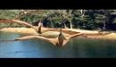 Caminando con Dinosaurios La película 3D - Trailer en Español (HD)
