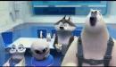Los pingüinos de Madagascar - Trailer en español (HD)