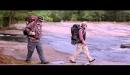 Un paseo por el bosque - Tráiler español HD